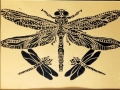 joy waldinger dragonfly