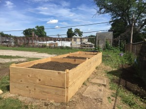 From Movie Set to Community Garden!
