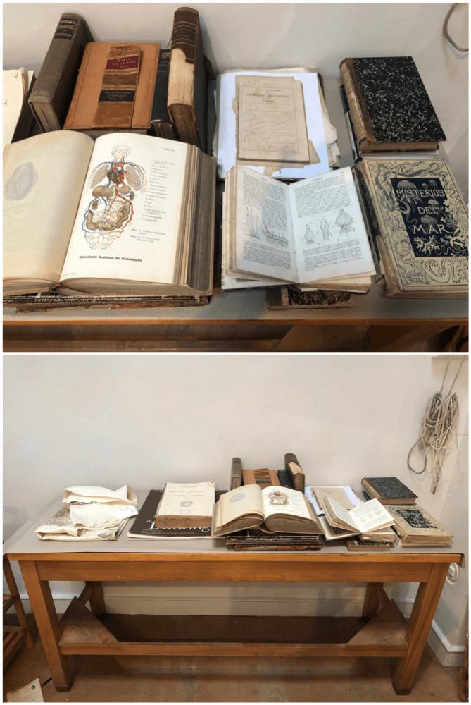 Cecilia Paredes desks in use